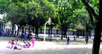 Escola Bernat de Boïl